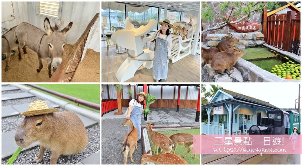 2021宜蘭三星景點》三星一日遊行程!可愛水豚君,溫泉煮蛋,親子牧場,三星鄉這樣玩整天