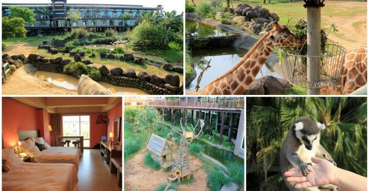 新竹關西 | 六福莊生態度假旅館,在動物園裡住一晚,長頸鹿、狐猴超可愛~ @小兔小安*旅遊札記