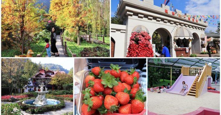 南投景點》埔里台一生態休閒農場,美拍池畔落羽松林、採草莓與看蜜蜂的家喔~ @小兔小安*旅遊札記