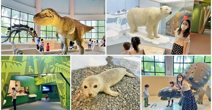 台中科博館》侏儸紀公園!國立自然科學博物館,巨大暴龍、北極熊生態,恐龍迷必訪場館 @小兔小安*旅遊札記