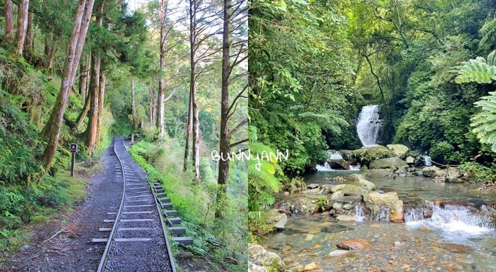 宜蘭登山步道》精選宜蘭森林景點,好走的山林步道,沐浴芬多精輕鬆之旅