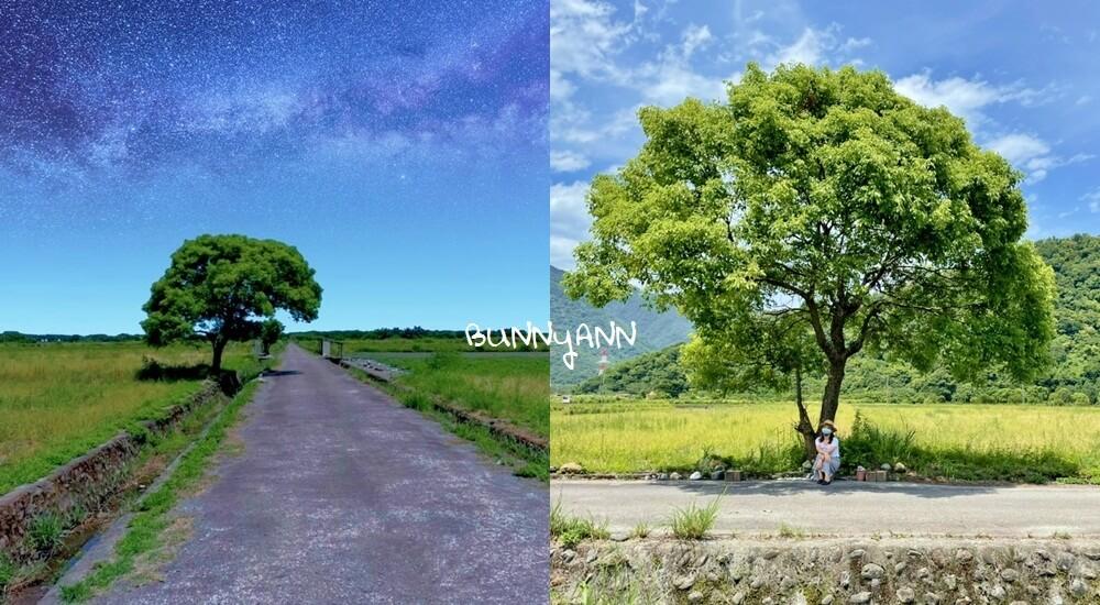 網站近期文章:宜蘭景點》I SEE YOU,南澳金城武樹,美拍星空與油綠稻田伯朗大道~