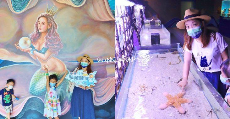 小琉球海洋館,神奇海螺聽海,門票介紹&海星觸摸池體驗 @小兔小安*旅遊札記