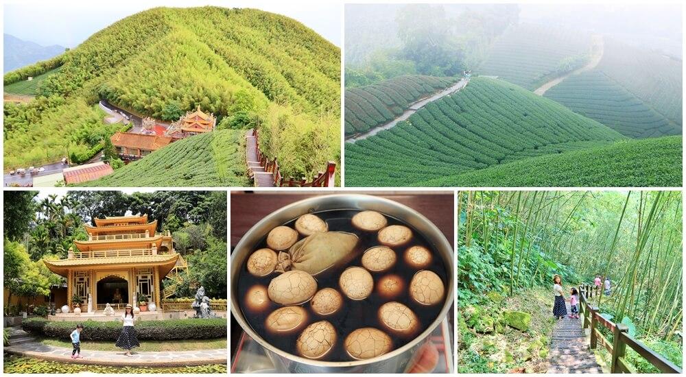 嘉義梅山一日遊,梅山景點必玩推薦,茶園步道&美食全搞定