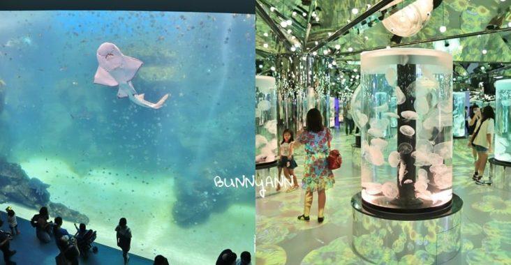 桃園XPARK水族館》跟企鵝一起吃飯!八景島水族館XPARK水生公園,七大主題展區曝光~ @小兔小安*旅遊札記