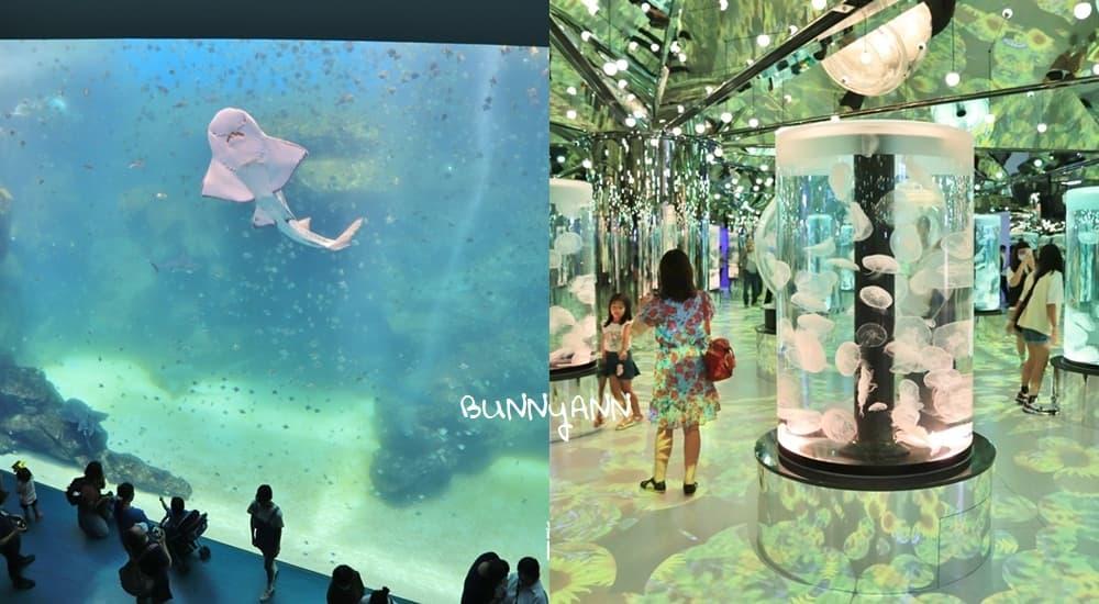 桃園XPARK水族館》跟企鵝一起吃飯!八景島水族館XPARK水生公園,七大主題展區曝光~