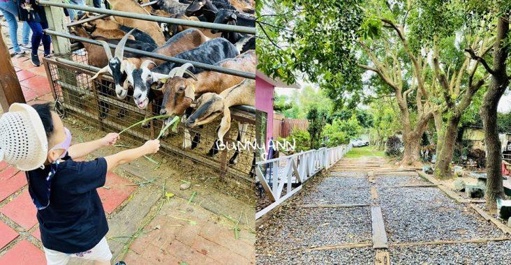 台中益健乳羊牧場好玩嗎,不用入場費飼料又便宜,餵羊好地方 @小兔小安*旅遊札記