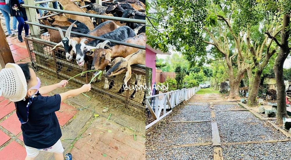 網站近期文章:台中益健乳羊牧場好玩嗎,不用入場費飼料又便宜,餵羊好地方