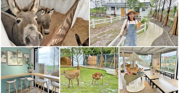 宜蘭新農場》星寶l鄉間小路,餵迷你驢、梅花鹿超可愛,文青系園區中貼近大自然 @小兔小安*旅遊札記