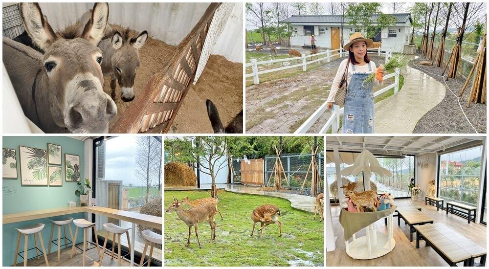 宜蘭新農場》星寶l鄉間小路,餵迷你驢、梅花鹿超可愛,文青系園區中貼近大自然