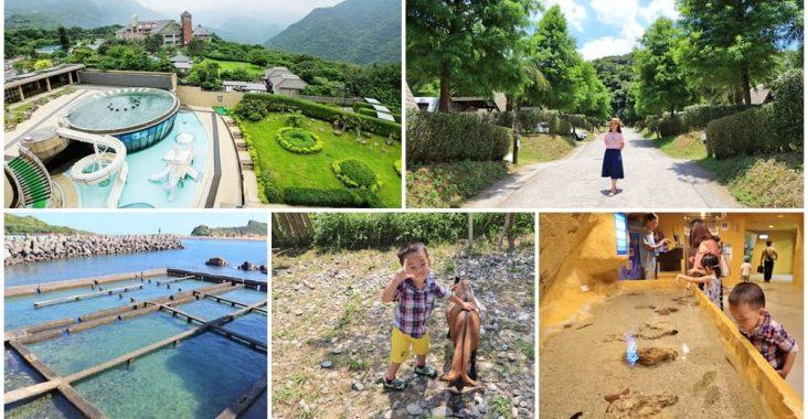 帶你玩野柳景點一日遊推薦,可愛海豚表演、女王頭一次筆記 @小兔小安*旅遊札記