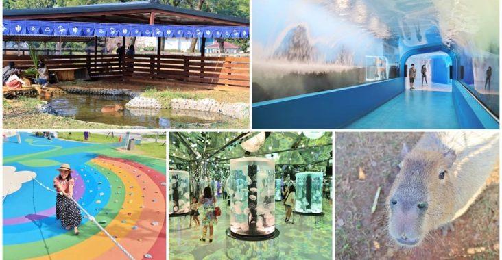 青埔景點一日遊,7個好玩必訪景點推薦,水生公園、華泰名品城、企鵝餐廳,好吃好玩在青埔! @小兔小安*旅遊札記