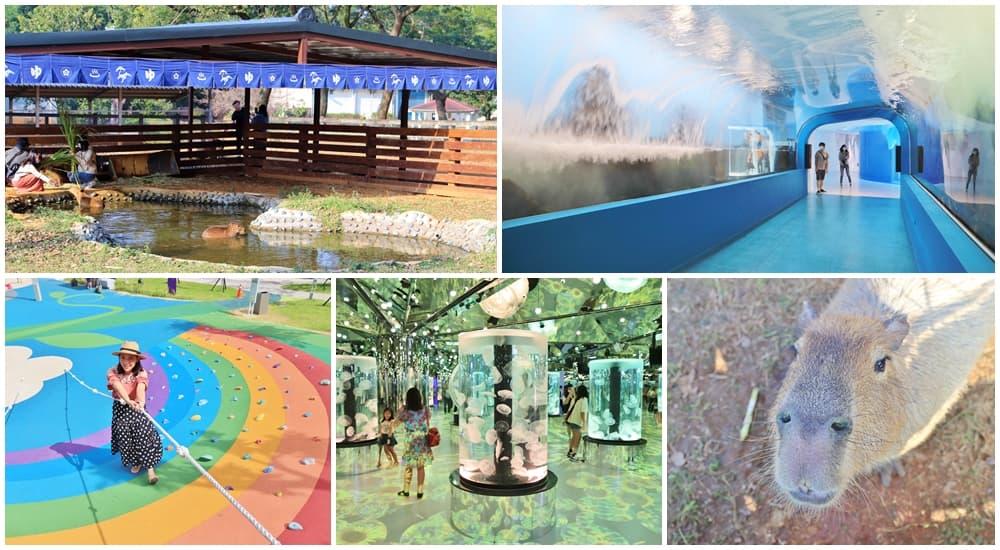網站近期文章:青埔景點一日遊,7個好玩必訪景點推薦,水生公園、華泰名品城、企鵝餐廳,好吃好玩在青埔!
