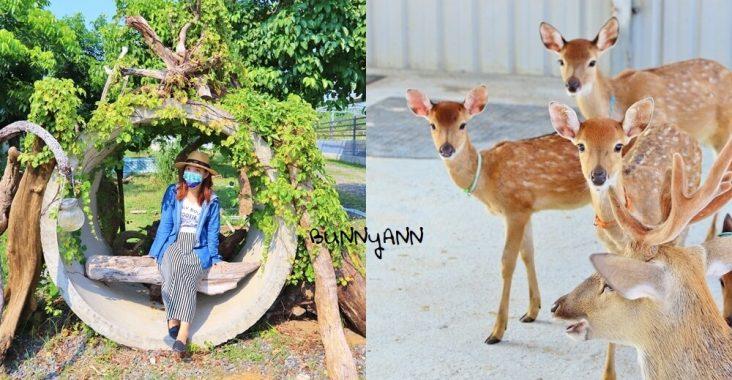 小琉球鹿粼梅花鹿園區,小鹿斑比包圍你,宮崎駿場景打卡去 @小兔小安*旅遊札記