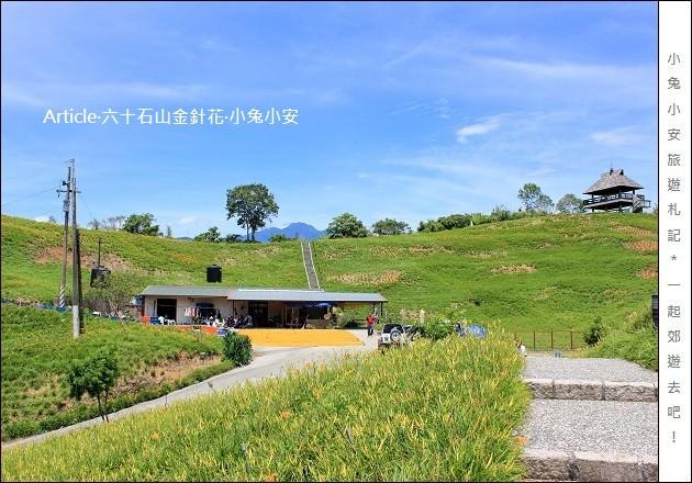 『花蓮金針花季』2011六十石山金針花季,德森有機農場。 @小兔小安*旅遊札記