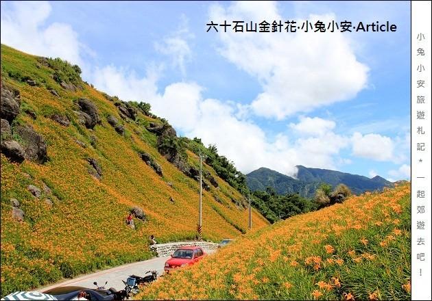 『花蓮金針花季』2011六十石山金針花季,台灣小瑞士篇。 @小兔小安*旅遊札記