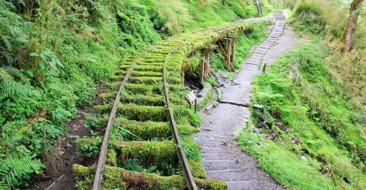 宜蘭景點 | 此生必遊!全球最美小路見晴懷古步道,絕美綠之森林鐵道~ @小兔小安*旅遊札記