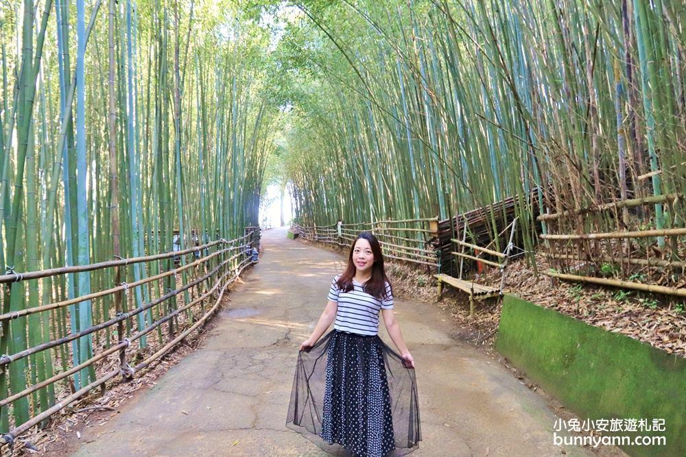苗栗景點》烏嘎彥竹林,台版小京都竹林,走進美麗嵐山竹林隧道(含路線)~