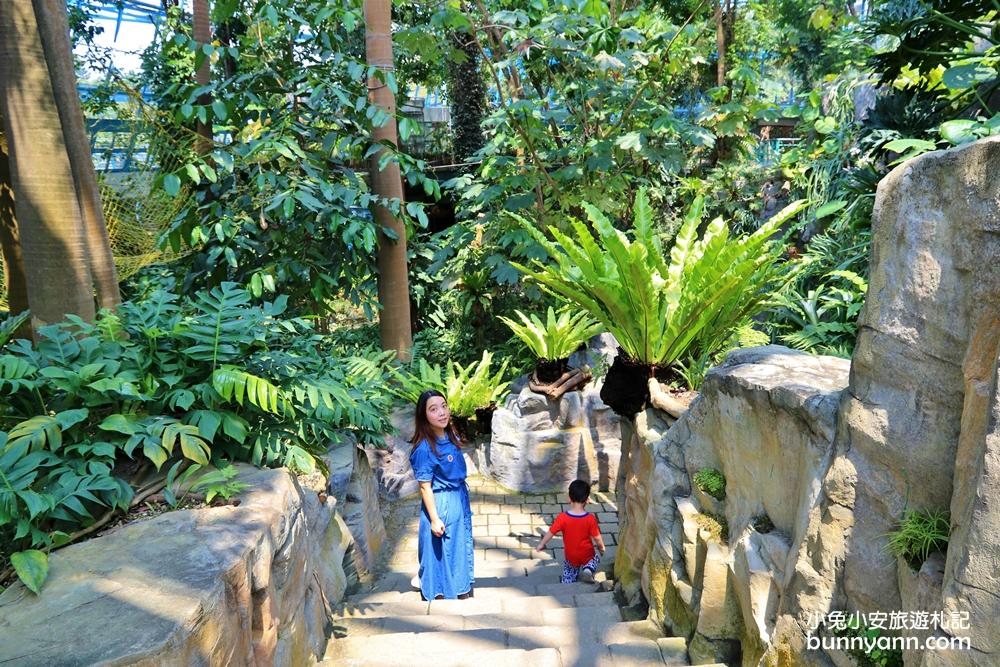 台中景點》小亞馬遜雨林!台中植物園迷你熱帶雨林,走進叢林裡找尋冒險味道~