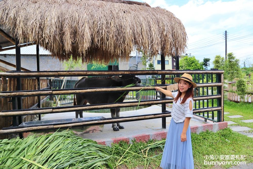 宜蘭新景點》愛小動物必收藏!心心農家樂貼近農村生活樂趣,玩水、餵小豬好好玩~