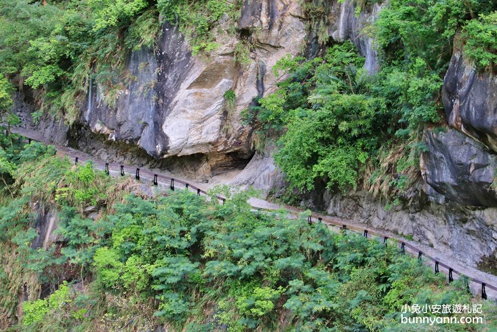 花蓮景點》絕對美境!砂卡礑步道走進神秘谷,入門級森林小徑,森有氧踏青一日遊~