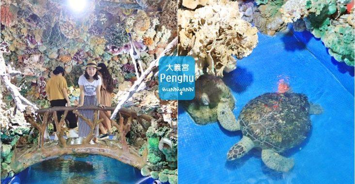 澎湖景點》太夢幻!大義宮珊瑚海底王國,唯一合法養海龜的藍色海底世界~ @小兔小安*旅遊札記