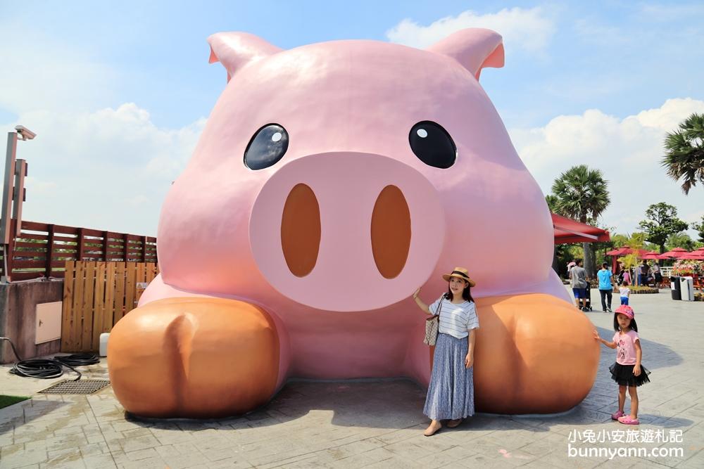嘉義新景點》敲可愛!賣萌三隻小豬觀光農場,餵動物、哈比屋、玩沙、IG打卡玩不停!