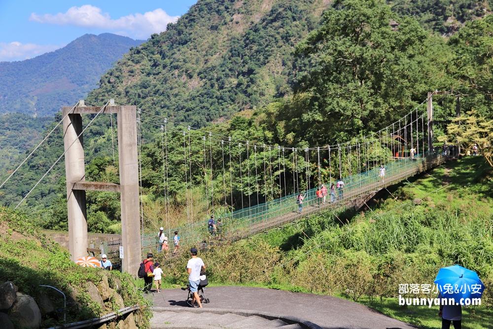 南投》銅板價玩整天!鳳凰谷鳥園生態園區,賞鳥、玩森林溜滑梯、拍瀑布享受森林浴