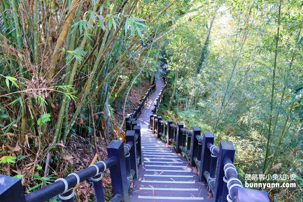 苗栗》就是有桑!平坦好走蓬萊溪護魚步道,漫步森林溪畔旁,大口呼吸森有氧,一起貼近自然