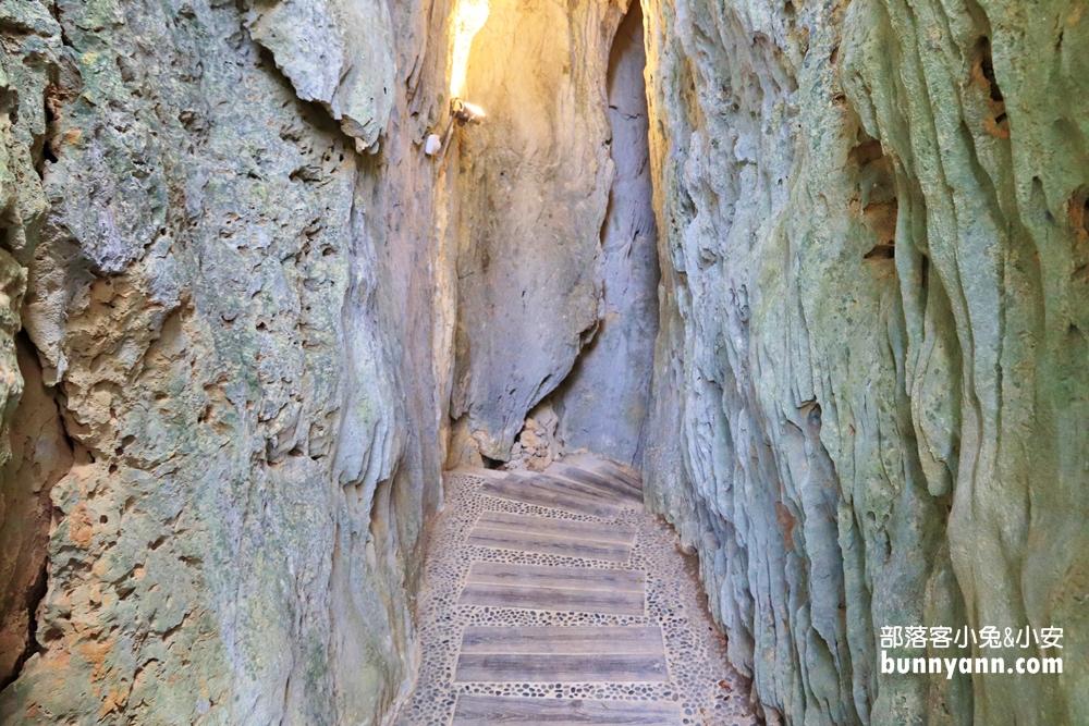 屏東》周末踏青!快來墾丁國家森林遊樂區,地底洞穴、巨大神木,森林小徑散步超愜意!