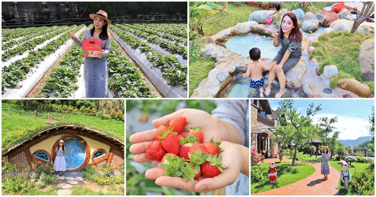 2021苗栗大湖景點|採草莓一日遊行程|帶你玩石湯溫泉、愛麗絲的天空、烏嘎彥竹林 @小兔小安*旅遊札記