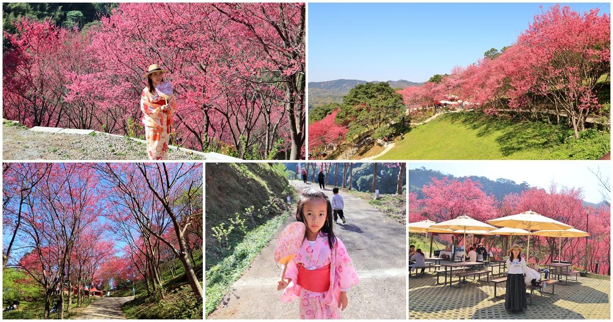 桃園》上山放空!翠墨莊園森林系小旅行,登山步道、鳥居地藏神社,踏青打卡放鬆去 @小兔小安*旅遊札記