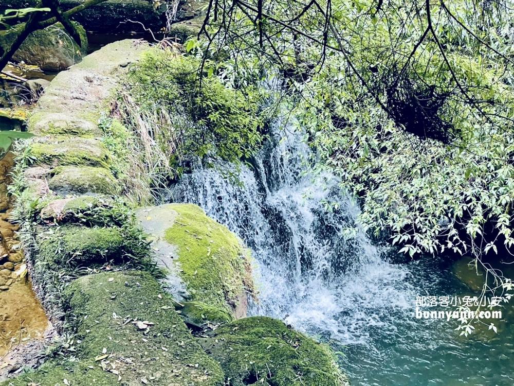 新北》森林秘境!十分鐘攻略望古瀑布,尚未完全開發的天然景區!