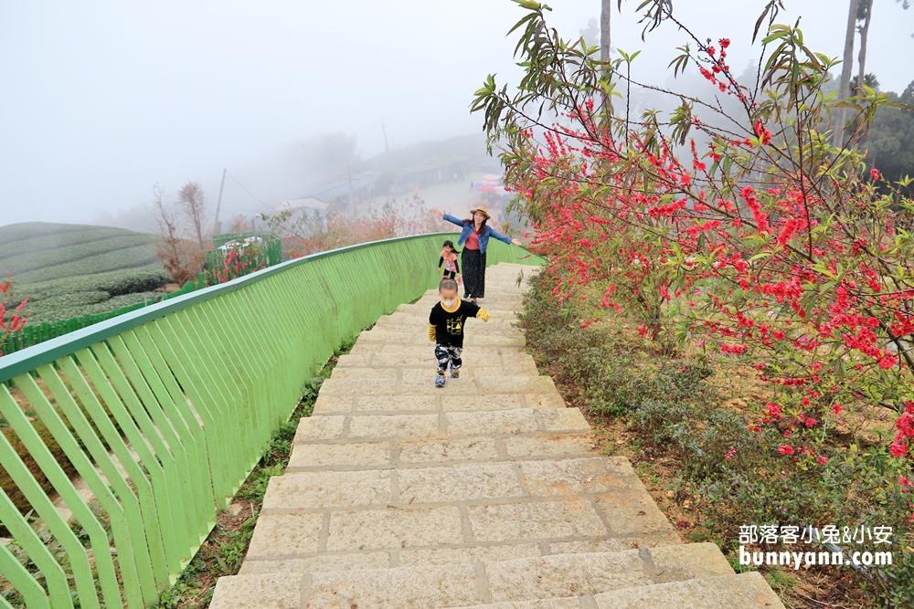 雲林三日遊》連續假期趣雲林三天兩夜,雲林人氣景點行程參考!