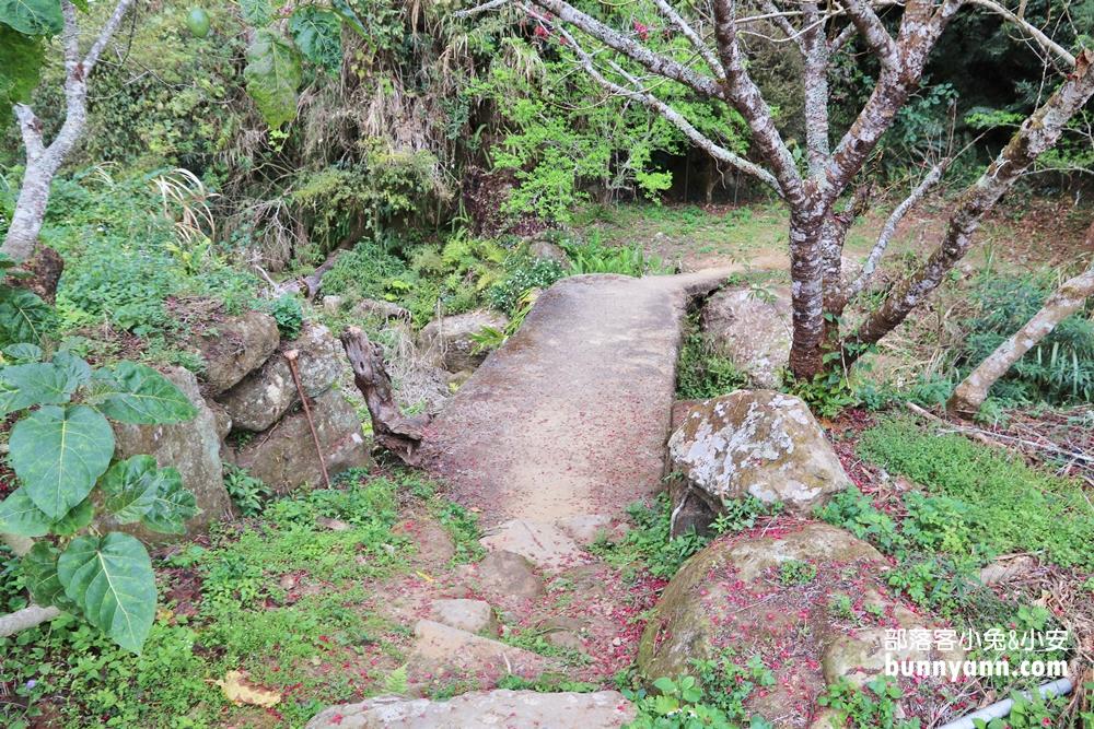 雲林》私房景點!漫步連心池瀑布,細賞石壁仙谷壯麗河谷風貌,探訪自然秘境