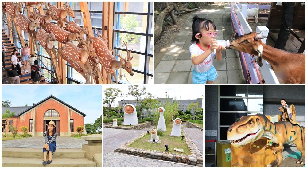 台南景點一日遊》樹谷與左鎮可以這樣玩!恐龍化石館、農場餵羊、貨櫃公園玩不停~