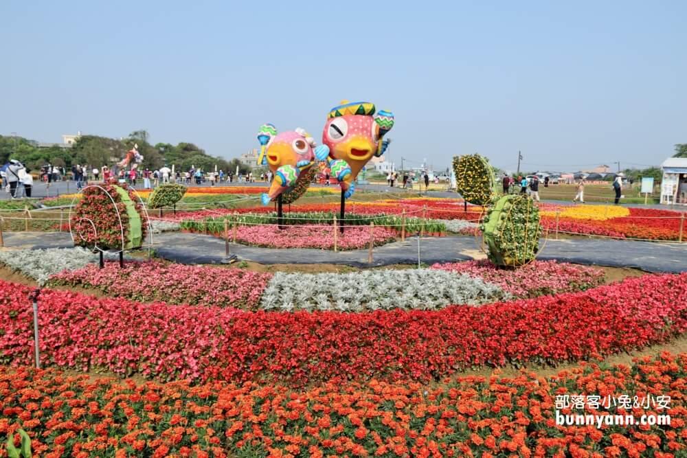 桃園景點|桃園彩色海芋季|繽紛彩色海芋 可愛海洋元素|假日來賞花半日遊