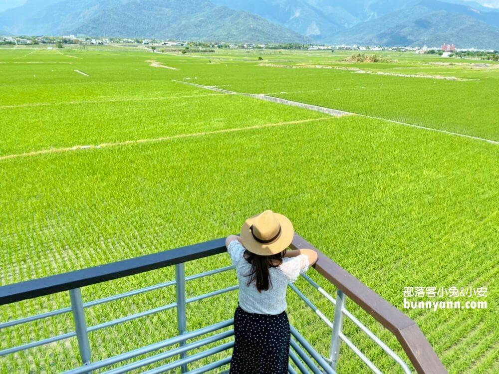 台東景點 錦園洗衣亭好美 最佳玩水田邊俱樂部 綠油油稻田好舒心