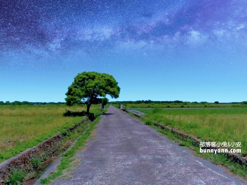宜蘭景點》I SEE YOU,南澳金城武樹,美拍星空與油綠稻田伯朗大道~
