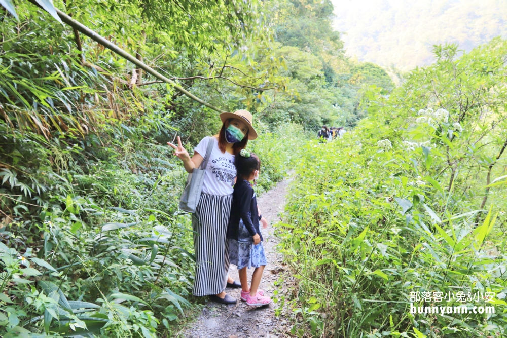 南投彩蝶瀑布,夏日踩踩水的森林瀑布,溪水乾淨又沁涼