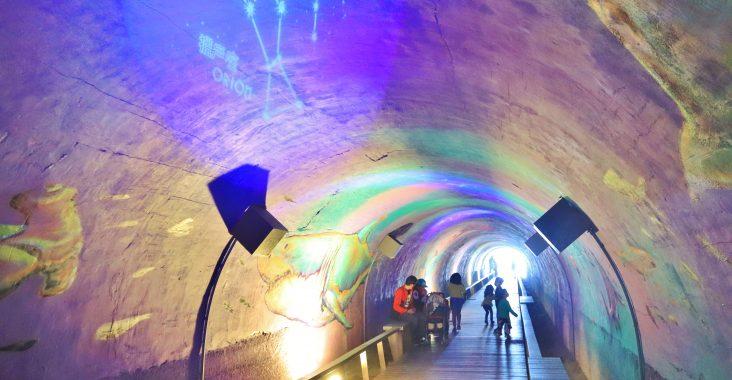 高雄》免費景點!旗津星空隧道,漫步海底世界,美拍十二星座夜空,海邊的秘密通道 @小兔小安*旅遊札記