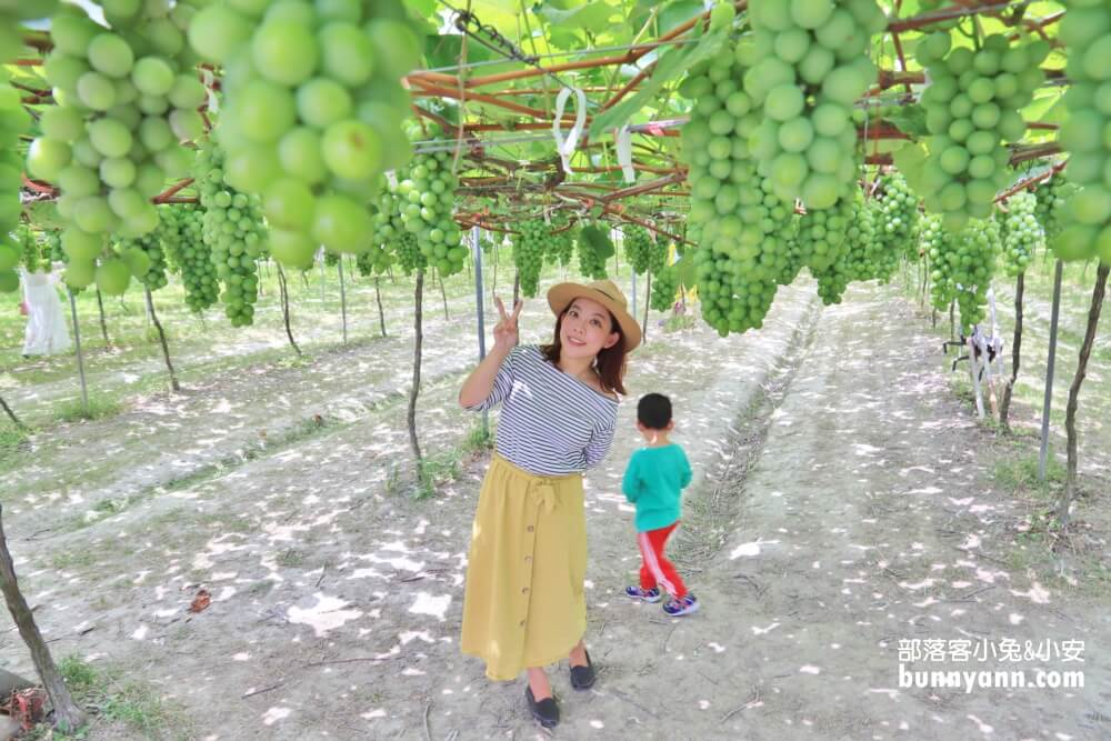 彰化景點》路葡萄酒莊,超美路葡萄隧道休閒農場,好吃葡萄冰淇淋,免門票景點