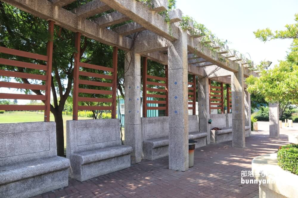 彰化景點》秀水龍騰公園,超高大金龍在這拍,賞綻放荷花,散步出遊好地方