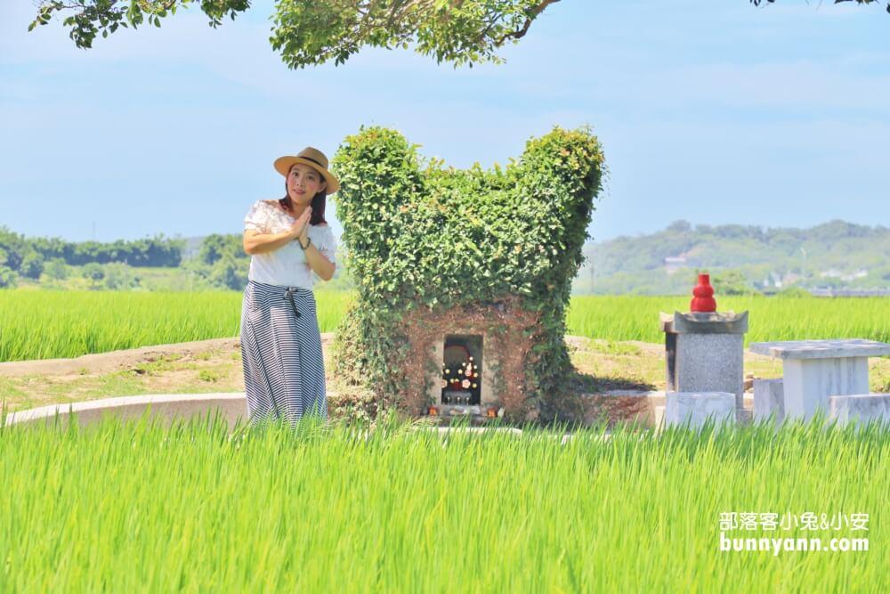 苗栗銅鑼》龍貓土地公,綠稻田裡的療癒系田心伯公廟,看見會有好心情