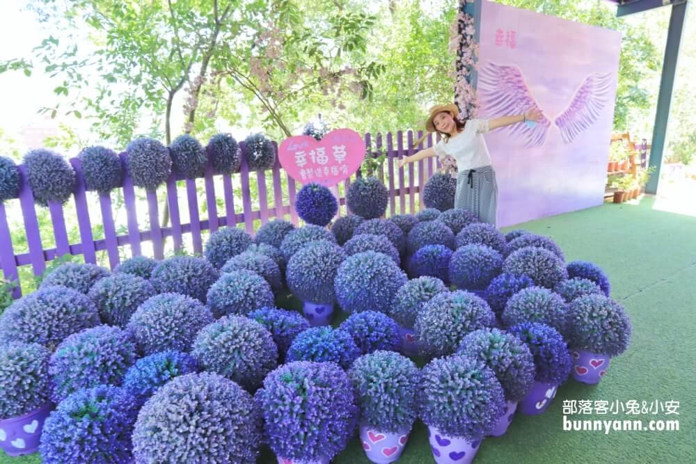 苗栗景點》噢哈娜咖啡屋,夢幻裝飾紫藤花隧道、紫色花傘、糖果屋、花台約會好浪漫~