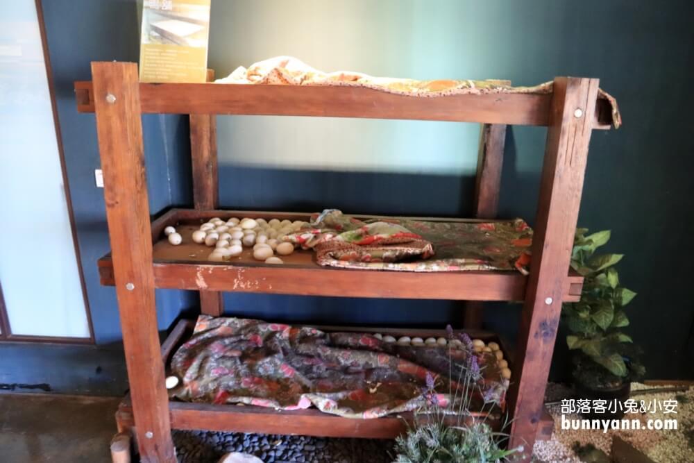 宜蘭鴨寮故事館,只要一百元,體驗撿鴨蛋餵鴨吃飯樂趣
