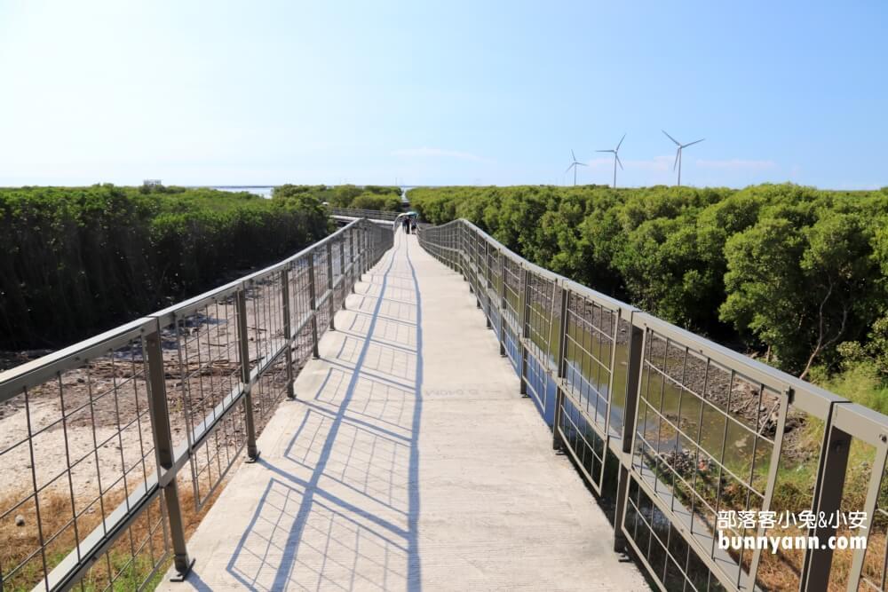 彰化芳苑海空步道,漫步紅樹林潮間帶,停車資訊分享