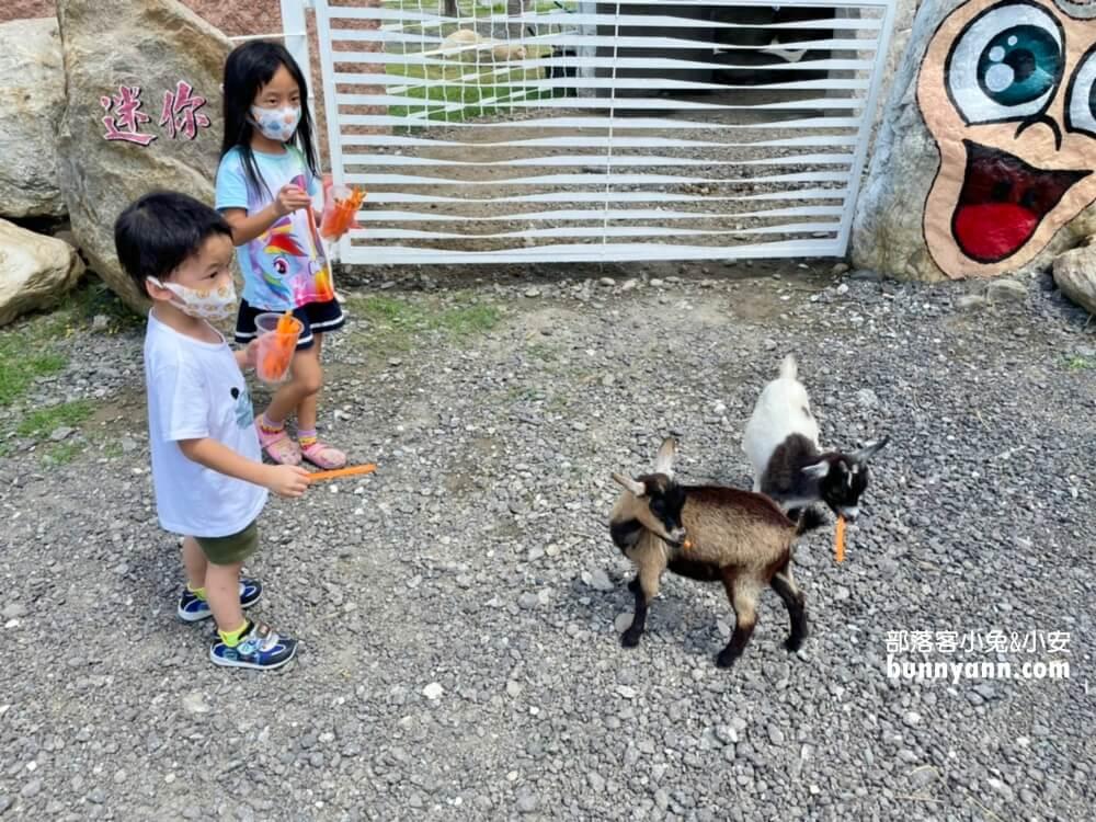 花蓮新景點》崇德瑩農場又一免費景點曝光,悠閒散步在紐西蘭牛牧場!