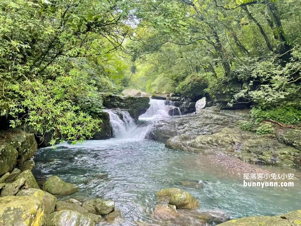 一定要去!新北森林&登山步道推薦,大台北賞飛瀑、森有氧秘境