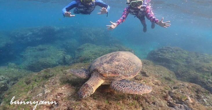 屏東小琉球浮潛&獨木舟這樣玩,和海龜共游好開心,花瓶岩超美麗 @小兔小安*旅遊札記